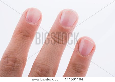 Hand showing its fingers and fingernails on a white background