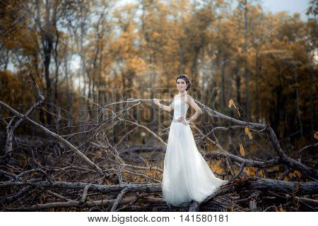 Beautiful girl in the dress of the bride walks in autumn park with trees and fallen leaves