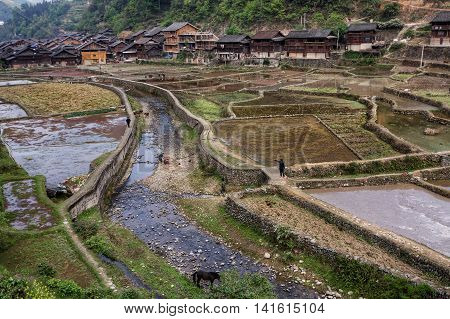 Zhaoxing Dong Village Guizhou Province China - April 9 2010: Chinese peasants poured water rice fields near the village of Dong ethnic minority.