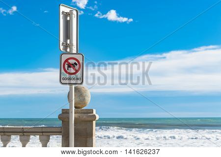 Red and white no dogs sign in Catalan language near ocean with large waves