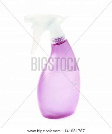 Violet plastic pulverizer spray isolated over the white background