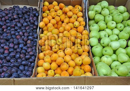 Boxes of colorful plums nectarines and apples