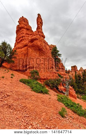 Red Canyon - Utah