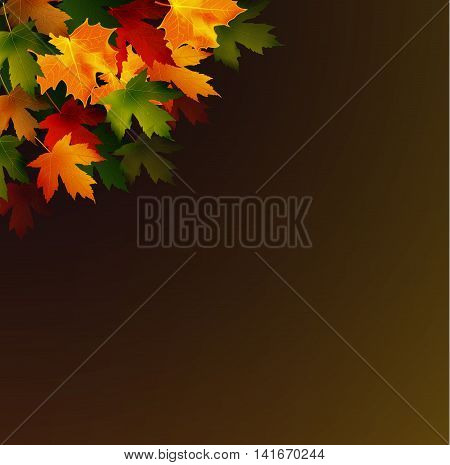 Framework from autumn leaves on a dark background