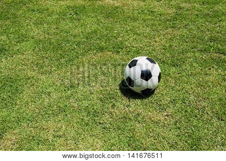 A ball has been abandoned at the grass field.