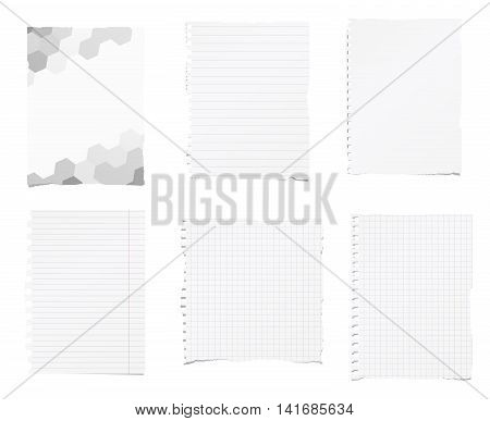 Set of ripped white, ruled, math notebook paper are stuck on white background.