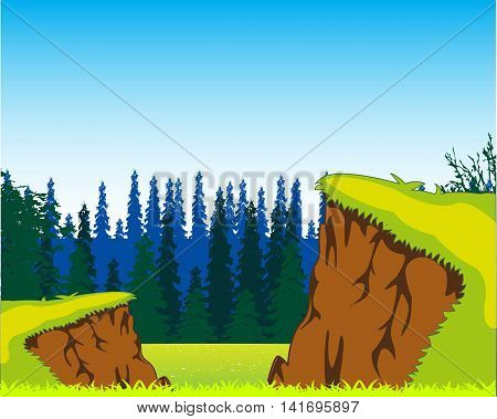 Beautiful year landscape with ravine and wood