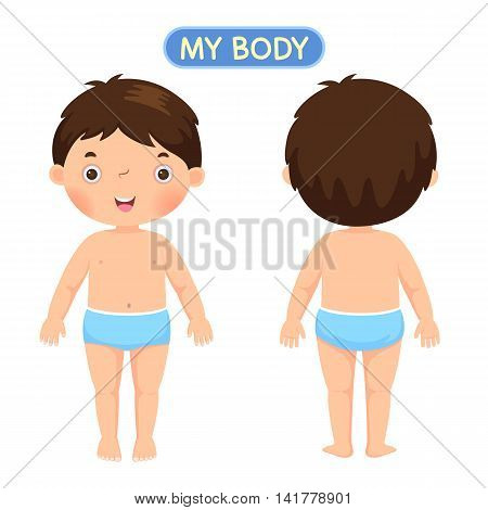 Vector illustration of a boy showing parts of the body