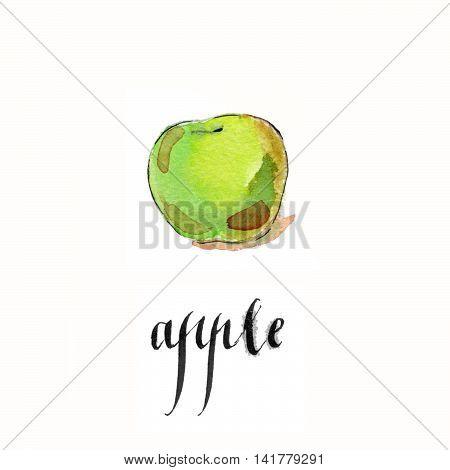 Watercolor hand drawn green apple - Illustration