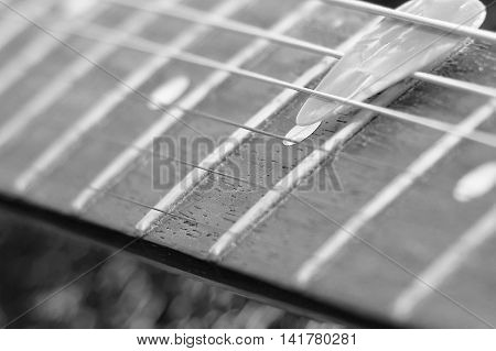 Black And White Pick And Vintage Fretboard Electric Guitar