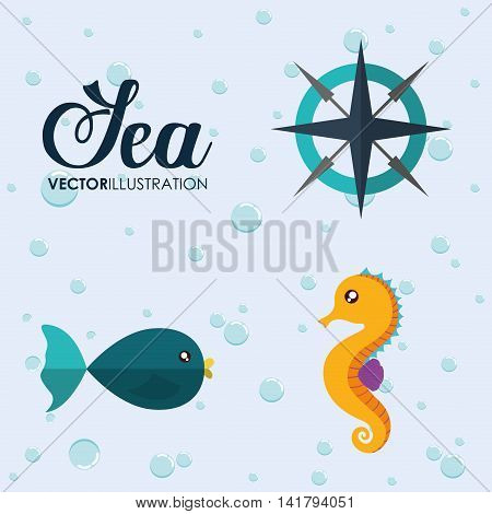 Sea animal cartoon design represented by sea horse, compass and fish icon. Colorfull and flat illustration.