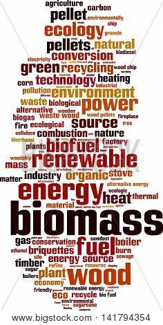 Biomass word cloud concept. Vector illustration on white