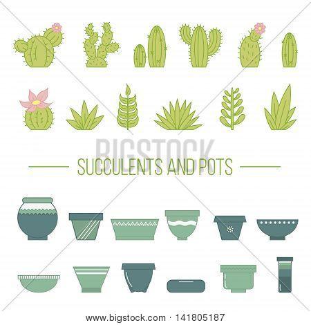 Set of succulent plants cactuses and pots. Linear botanical vector elements.