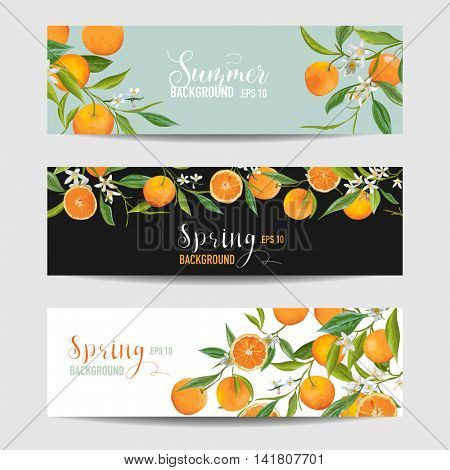 Orange Citrus Floral Banners and Tags Set - in vector