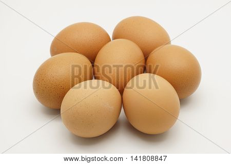 Close up of seven chicken eggs on a white background.