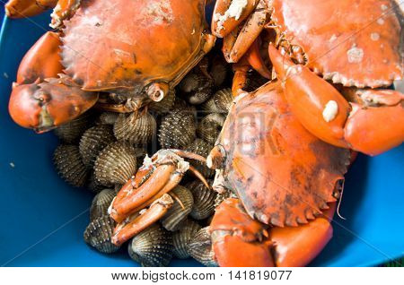Fresh of crab and cockles for cooking