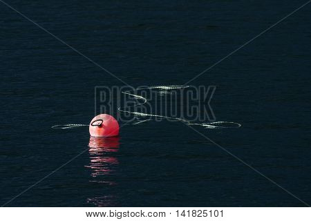 Red float, buoy fasten, tied up by a rope on the surface. Dark color of the water.