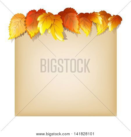 Autumn Design Template