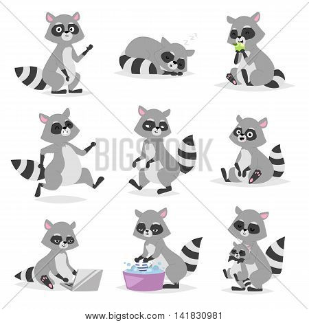 Standing raccoon vector illustration cartoon set. Fun smile drawing artwork furry cartoon raccoon cute mammal. Wild tail nature happy cartoon raccoon mammal gesture wildlife character.