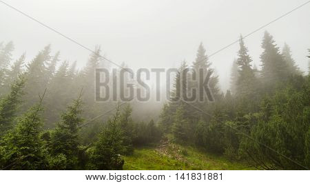 Mountain landscape in the Transylvanian Alps in summer, with mist clouds after the rain