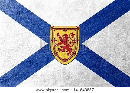 Flag Of Nova Scotia Province, Canada, Painted On Leather Texture