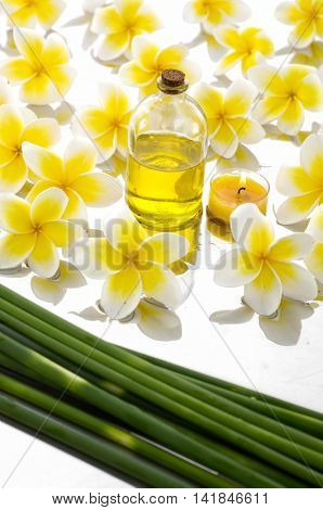 Many frangipani with bamboo grove, massage oil