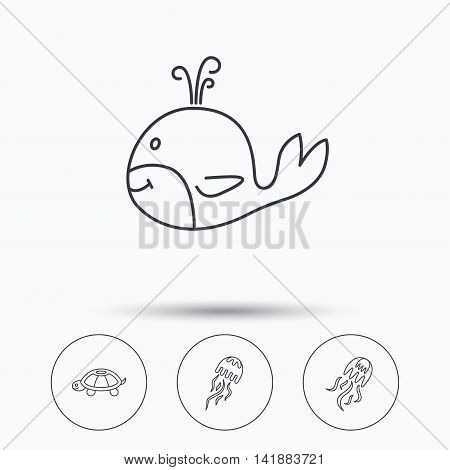 Turtle and jellyfish  icons. Whale linear sign. Linear icons in circle buttons. Flat web symbols. Vector