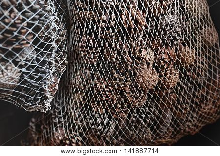 plastic mesh filled with dried willow cones