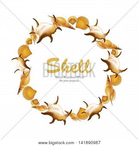 Shells round frame on white background. Vector illustration.