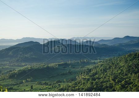 forest and blue sky is background in Thailand