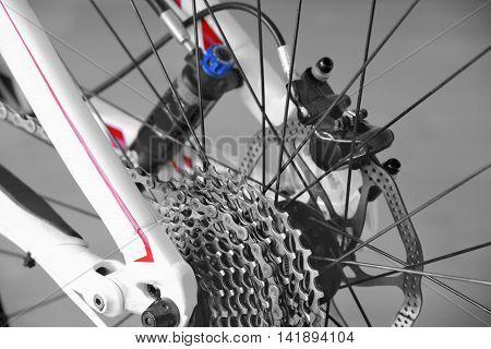 Rear Wheel Mountain Bike