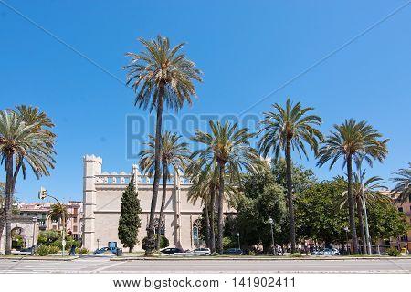 La Llotja Building And Palm Trees