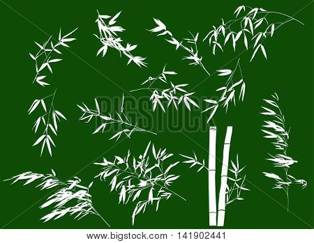 illustration with bamboo branches collection on green background