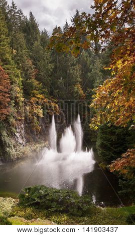 Dancing fountain in quiet pond, surrounded by pine forest. Autumn day in the park. Butchart Gardens on Vancouver Island, Canada