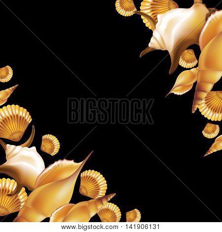 Shells on black background frame. Vector illustration.