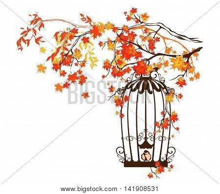 bird cage among autumn tree branches - fall season vector design