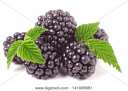 pile of blackberry with leaves isolated on white background.