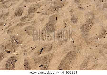 A close-up shot of dirty sand on the beach