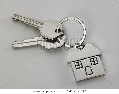 pair of the house key with house shaped keyring