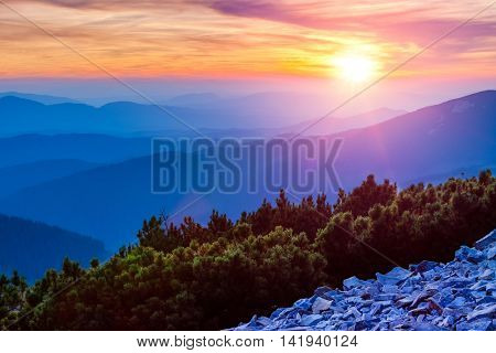 Colorful sunset or sunrise with sunshine and clouds above blue misty mountain silhouettes fir bushes stones the hill side horizon skyline panorama landscape mountains