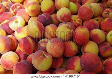 Yellow and red ripe peaches for market display