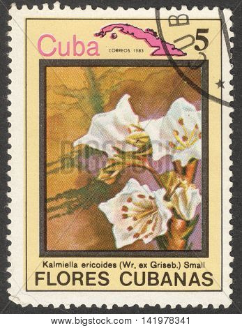 MOSCOW RUSSIA - CIRCA MAY 2016: a post stamp printed in CUBA shows Kalmiella ericoides flower the series