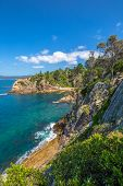 Rotary Park: the cliffs of tropical Eden in the sapphire coast, situated on the magnificent waters of Twofold Bay, is a coastal town in the South Coast region of New South Wales, Australia. poster