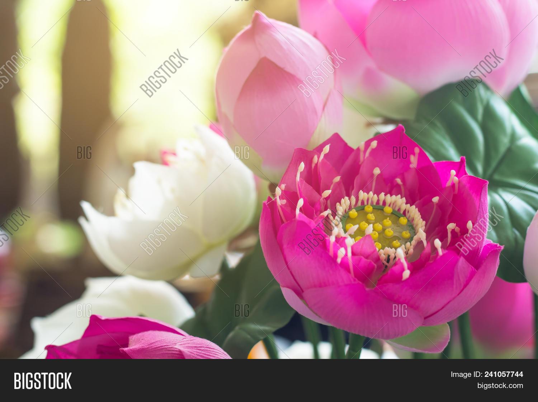 Lotus Fake Flower Image Photo Free Trial Bigstock