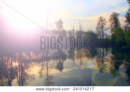 Beautiful Dawn Over The Forest River With Sunlight Reflections. Water Scenery. Dawn Landscape With T