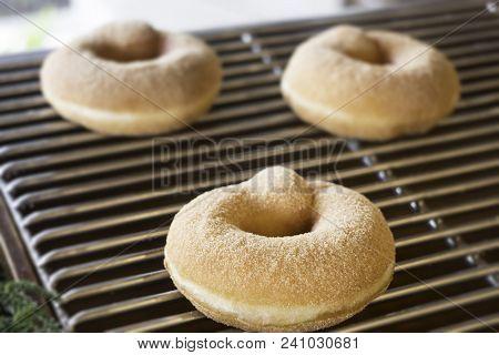 Fresh Baked Donut On Shelf, Stock Photo