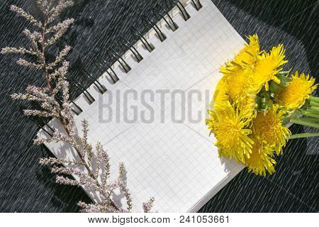 Top View Of Memo Pad With Pages Holding Together By Binder. Writing Pad Decorated Yellow Dandelion F