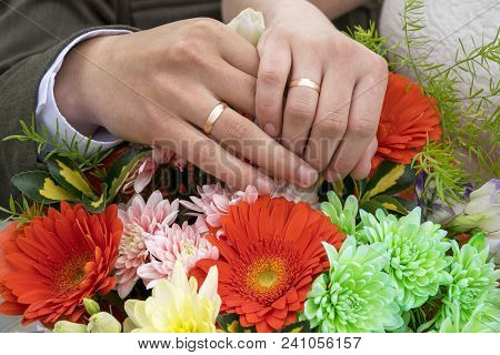 Close Up Of Happy Just Married Holding Hands Each Other And Demonstrating Golden Rings On Fingers. F