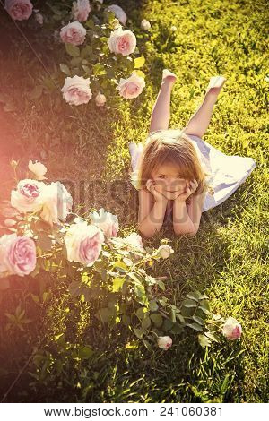 Kids Enyoj Happy Day. Girl Lying On Green Grass In Summer Garden. Child With Cute Smile At Blossomin