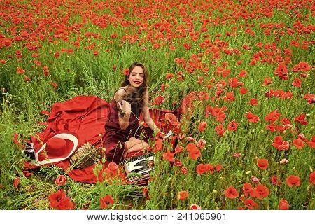 Woman Writer In Poppy Flower Field. Journalism And Writing, Summer. Opium Poppy, Agile Business, Eco